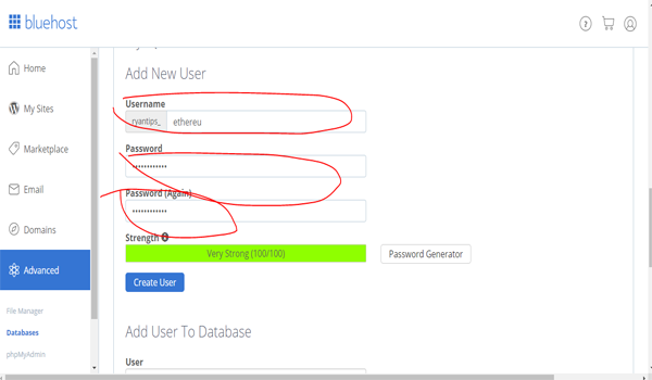 hướng dẫn cách tạo new user trên nluehost