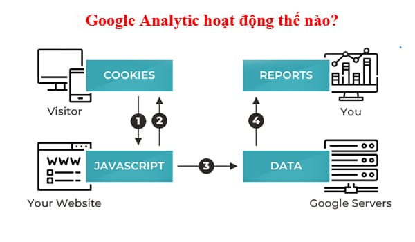 Cach Thuc Hoat Dong Cua Google Analytic